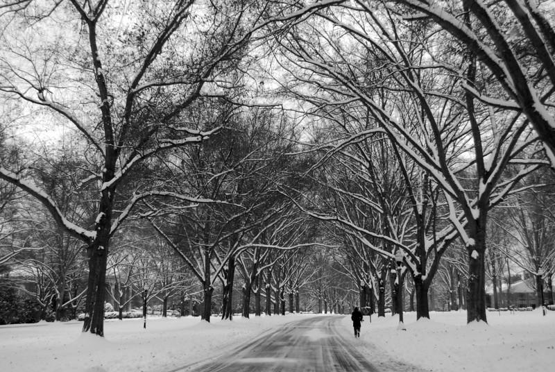Snow-covered Furman University - Greenville, SC.