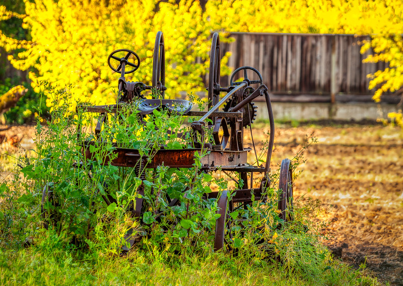 Farm Machine 1, Campbell, California, 2010