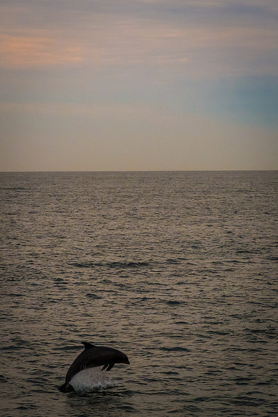 Cape May, New Jersey ByAlexKaplan www.AlexKaplanPhoto.com