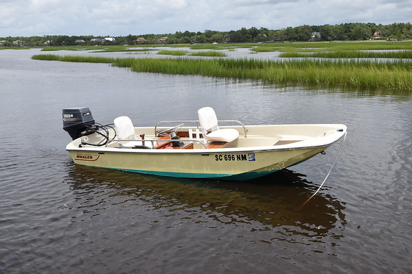 FOR SALE 1979 Boston Whaler