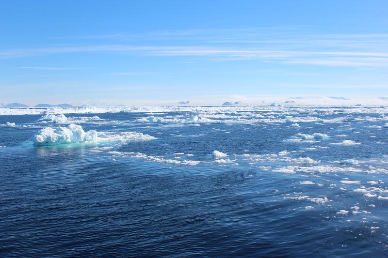 Antarctica 029.JPG