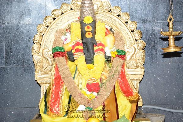 Canada Sri Ayyappan Hindu Temple Chariot Festival 16
