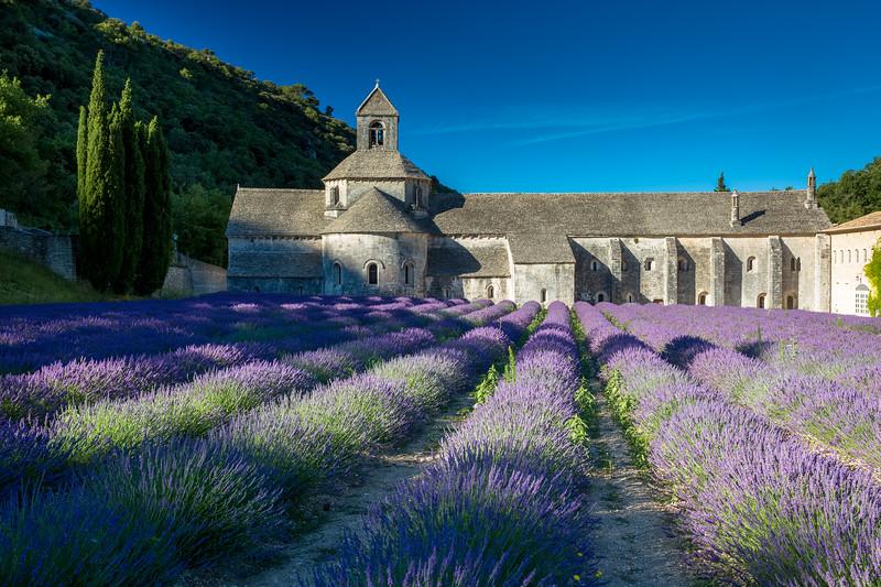 Provence Sanonique.jpg