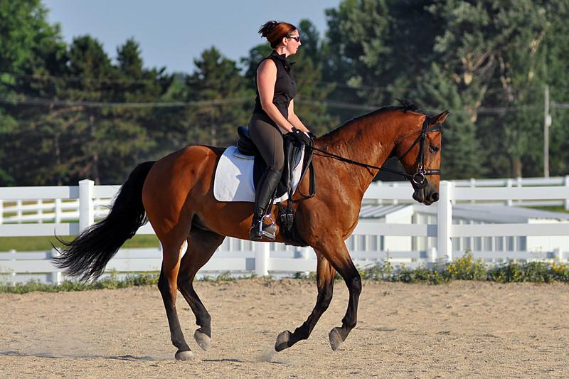 Horses July 2011 364a.jpg