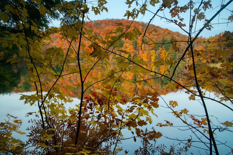 Vermont Fall 2019-9.jpg