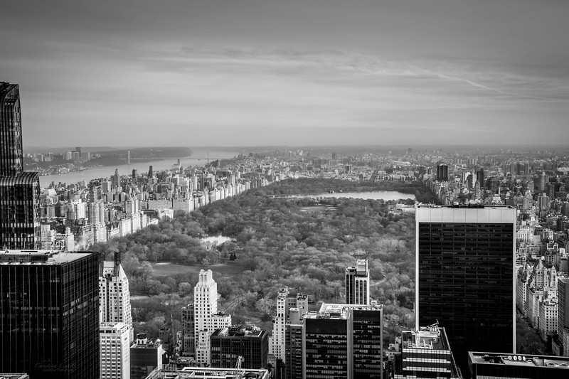 B&w view of Central park and city.jpg