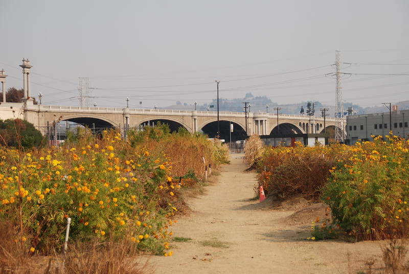 2008-11, Pathway and Bridge