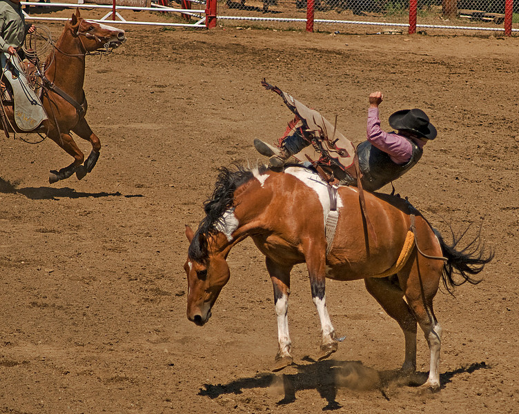 COOMBS RODEO-2009-3564A.jpg