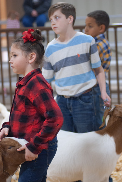 kay_county_showdown_goats_20191207-171.jpg