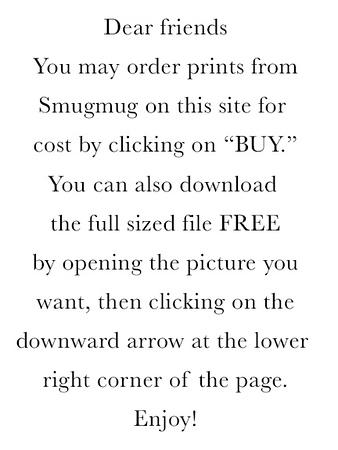 Photo Dwnld Instructions.jpg