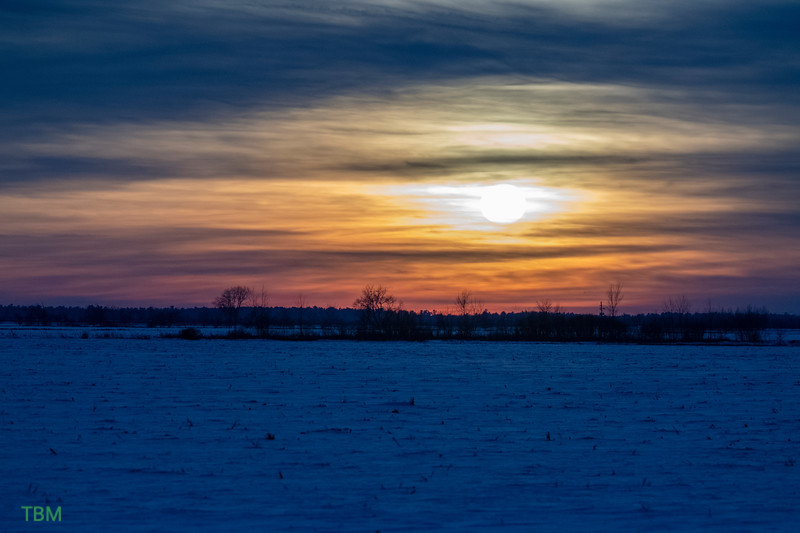 Buena Vista Grasslands sunset