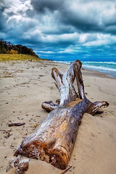 Stormy Michigan Beach