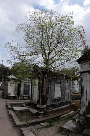 SQ1-141-144 - Thomas McKnight Tomb