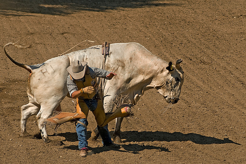 COOMBS RODEO-2009-3720A.jpg