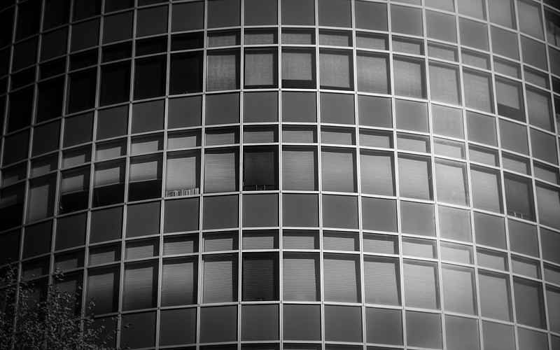 Windows bw light-3.jpg