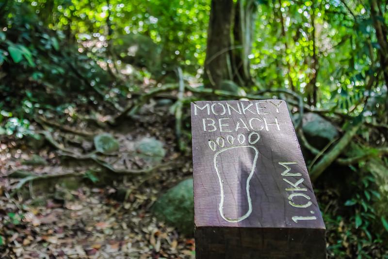 Southeast Asia Adventures Taman Negara Penang Malaysia