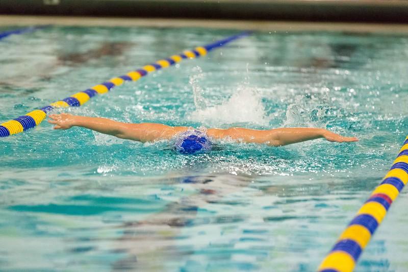 MMA-Swimming-2019-II-028.jpg