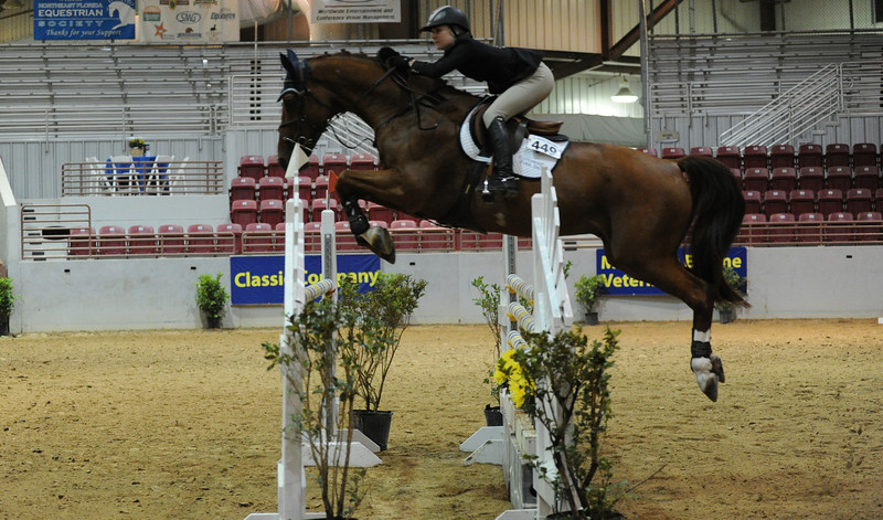 Horse show (93).jpg