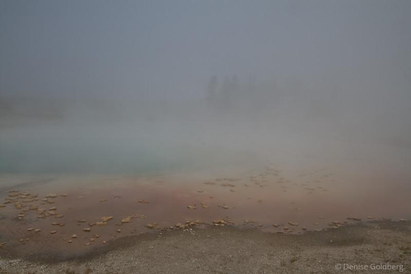 a foggy Midway Geyser Basin