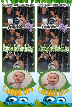 Happy 1st Birthday CASSIUS LIVA