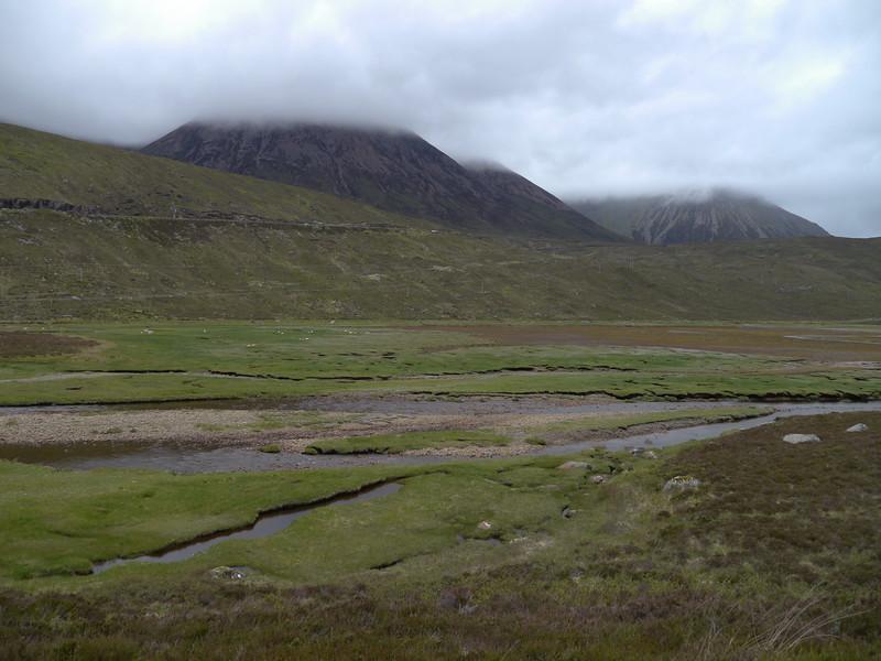 @RobAng Juni 2015 / Sconser, Isle of Skye / Eilean a'Cheo Ward  (Inner Hebridies), Scotland, GBR, Grossbritanien / Great Britain, 13 m ü/M, 2015/06/19 15:56:05