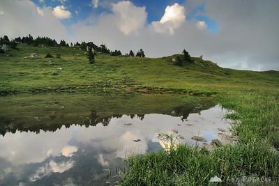 Velika planina - Jul 9, 2009