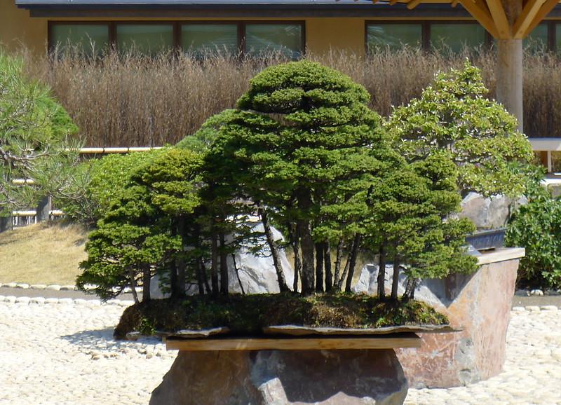 02-Japan2011_0908.JPG