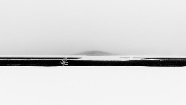 Yellowstone Winter White