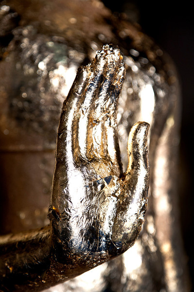 buddha_hand.jpg