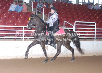 CLASS 13  JUV COUNTRY SADDLE