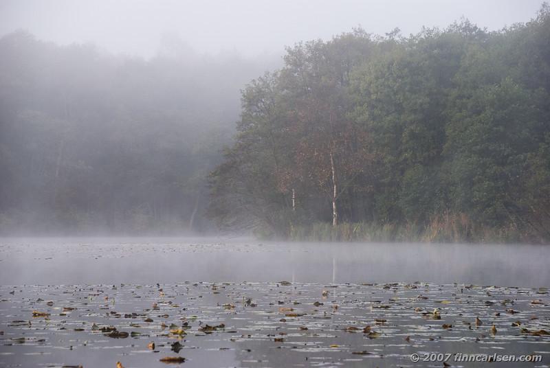 Let morgendis - Morning mist