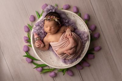 Teodora • Newborn