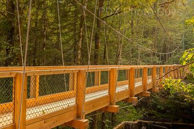 Rhodendron Footbridge Rededication