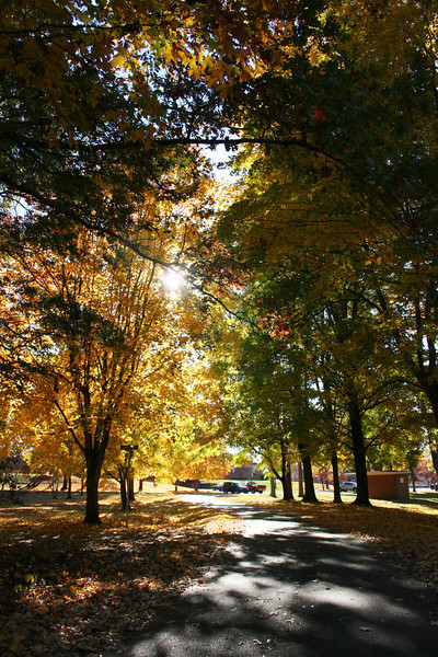 Memorial Drive on the campus of Gardner-Webb University on a Fall day.