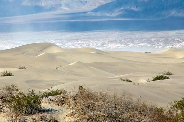Mesquite Flat Sand Dunes, Death Valley.  1547