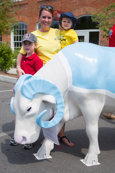 Round Up Event, CowParade North Carolina