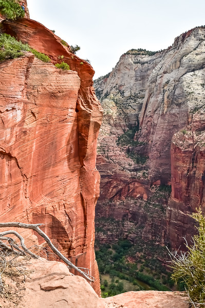 2019 Grand Canyon-28.jpg