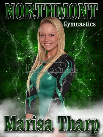 NM Gymnastics