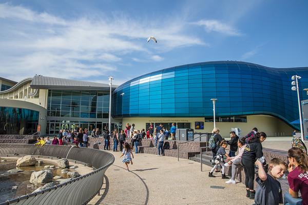 1st Grade Field trip-Long Beach Aquarium
