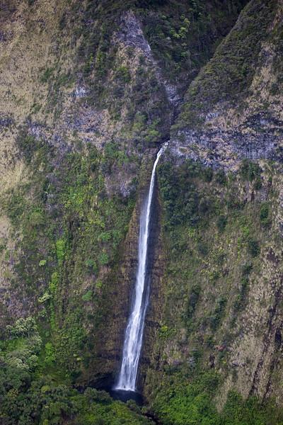 Hawaii - 061612 - 310.jpg