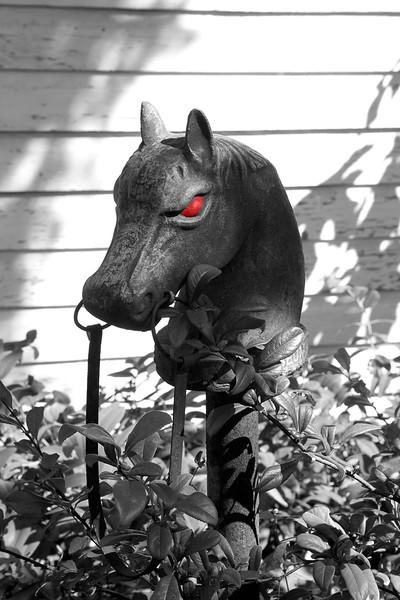 red eyed horse.jpg