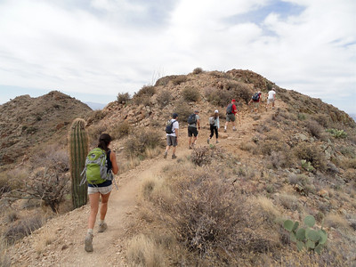 Wasson Peak Hike, 4-23-11