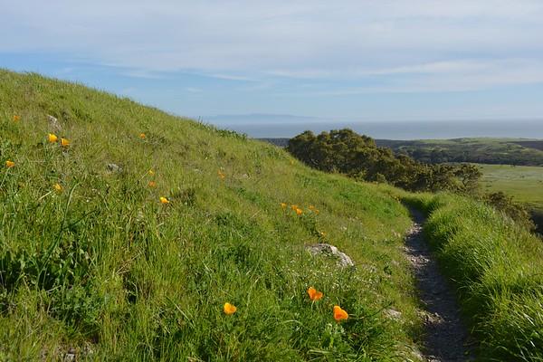 Wilder Hills Walk....