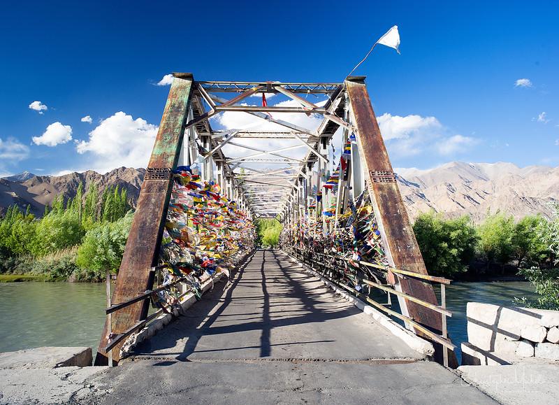20140708_ladakh_3355.jpg