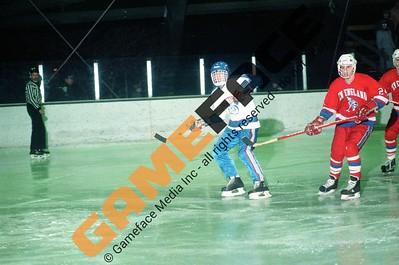 NEC Men's Hockey
