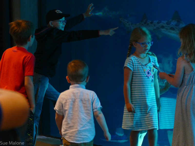 Rogers memorial at the aquarium (5 of 71).jpg