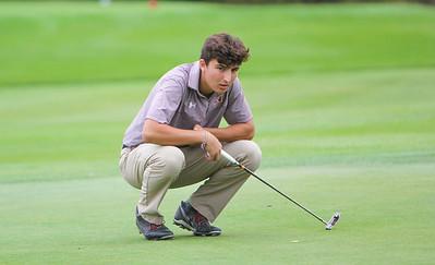 Varsity Golf IHSA Regionals 2017
