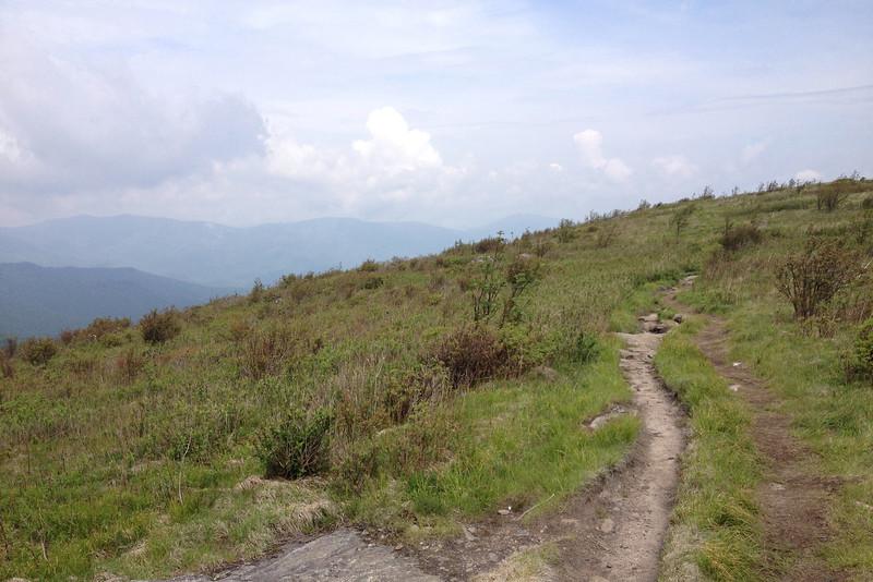 Art Loeb Trail (6,150')