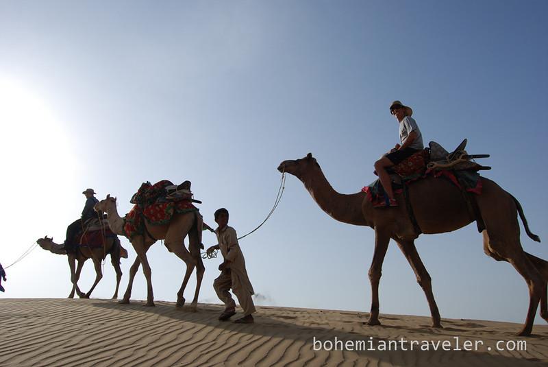 Camel safari rajasthan.jpg