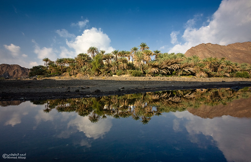Wadi Dema.jpg